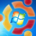 Linux + Windows